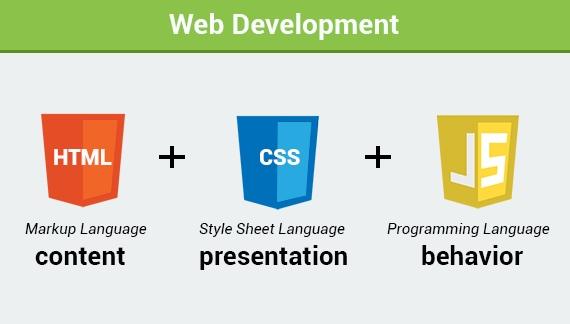 زبان های برنامه نویسی طراحی سایت + فیلم آموزشی وب - سایت آموزی