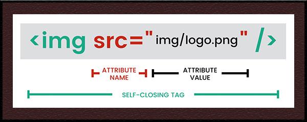 تگ img در زبان HTML
