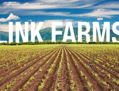 مزرعه لینک یا link farm چیست؟
